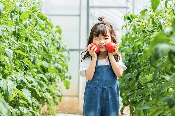 孩子不爱吃蔬菜怎么办? 这个故事可以帮助你!